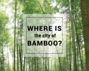 the city of bamboo