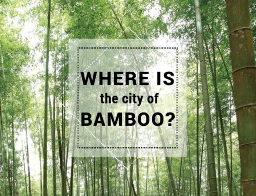 Where is the city of bamboo?